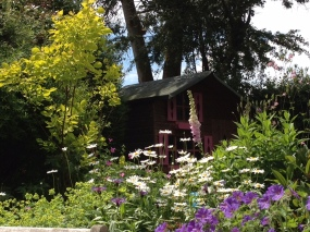 Cottage planting