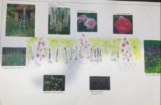 Planting visual